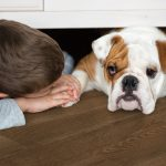 image showing child and dog laying on wood floor.